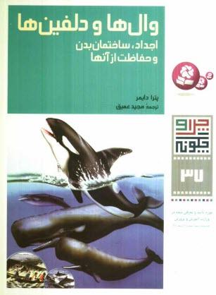 www.payane.ir - والها و دلفينها: اجداد، ساختمان بدن و حفاظت از آنها