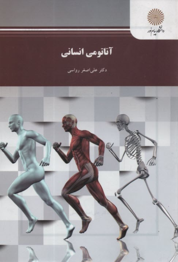 www.payane.ir - آناتومي انساني (رشته تربيتبدني)